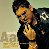 AaMin - 'Dige Bargard'