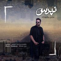 Abbas Roshanzadeh - 'Napors'