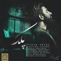 Afshin Amini - 'Pelk'