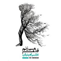 Ali Aminian - 'Meh'