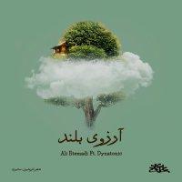 Ali Etemad - 'Arezooye Boland (Ft Dynatonic)'