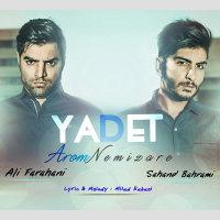 Ali Farahani & Sahand Bahrami - 'Yadet Aroom Nemizare'
