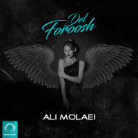 Ali Molaei - 'Delforoosh'