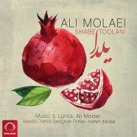 Ali Molaei - 'Shabe Toolani'