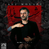 Ali Molaei - 'Shabe Yalda (DJ PS Remix)'