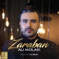 Ali Molaei - 'Zaraban'