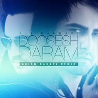 Ali Rahbari - 'Doosesh Daram (Remix)'
