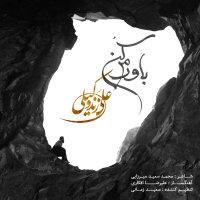 Ali Zand Vakili - 'Bavaram Kon'