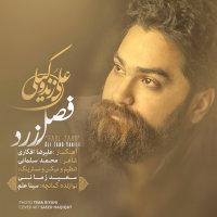 Ali Zand Vakili - 'Fasle Zard'