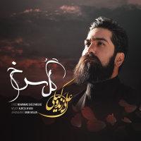 Ali Zand Vakili - 'Gole Sorkh'