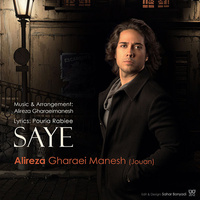 Alireza Gharaeimanesh - 'Saye'