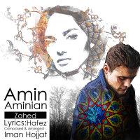 Amin Aminian - 'Zahed'