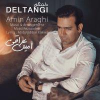 Amin Araghi - 'Deltangi'