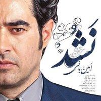 Amin Bani & Farnaz Maleki - 'Nashod'