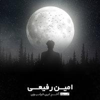 Amin Rafiee - 'Man Bayad Chikar Mikardam'