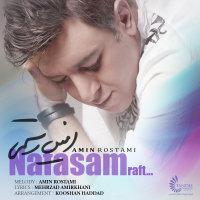 Amin Rostami - 'Nafasam Raft'
