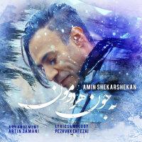 Amin Shekarshekan - 'Be Joone Hardomoon'