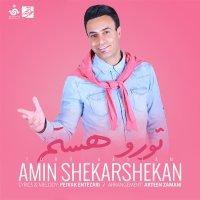 Amin Shekarshekan - 'Toro Hastam'