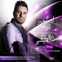 Amir Bayat - 'Dari Bad Mishi'