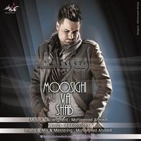 Amir Bayat - 'Moosighi Va Shab'