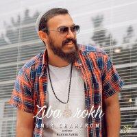 Amir Chaharom - 'Ziba Rokh'