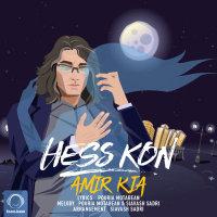 Amir Kia - 'Hess Kon'