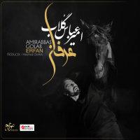 Amirabbas Golab - 'Erfan'
