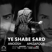 Anoosh & Amizapoor - 'Ye Shabe Sard'