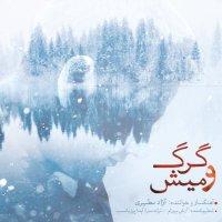 Azad Motahari - 'Gorgo Mish'