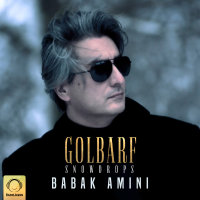 Babak Amini - 'Golbarf'