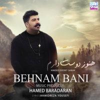 Behnam Bani - 'Hanooz Dooset Daram'