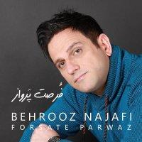 Behrooz Najafi - 'Forsate Parvaz'