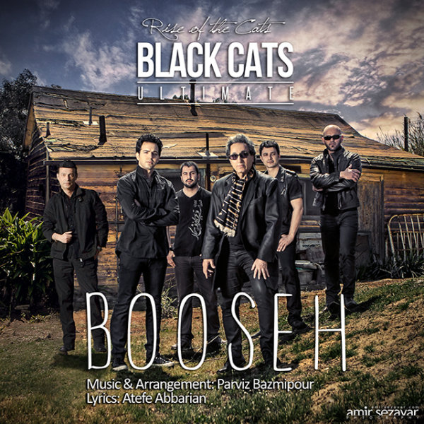 Black Cats - Booseh