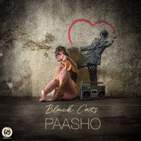 Black Cats - 'Paasho'