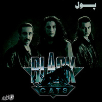 Black Cats - 'Rythm of Love'
