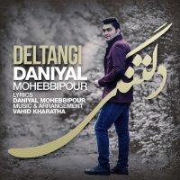 Daniyal Mohebbipour - 'Deltangi'