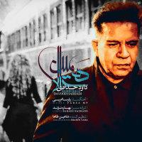 Davood Haddadi - 'Hamin Hala'