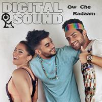 Digital Sound - 'Ow Che Radaam'