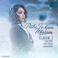 Elham Z  - 'Pishe To Kam Miyaram'