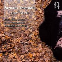 Farnam Tavakoli - 'Bavar Nakardi'