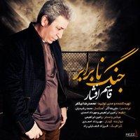 Ghasem Afshar - 'Jange Naa Barabar'