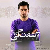 Hadi Feizabadi - 'Ashoftegi'