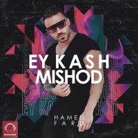Hamed Fard - 'Ey Kash Mishod'