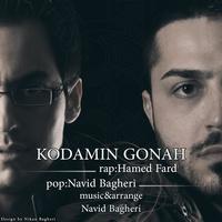 Hamed Fard - 'Kodamin Gonah (Ft Navid Bagheri)'