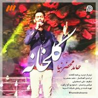 Hamed Mahzarnia - 'Golkhane'