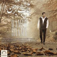 Hamed Shams - 'Betab Bar Man'