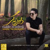 Hamid Talebzadeh - 'Dalile Zendegi'