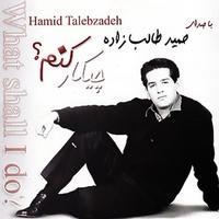 Hamid Talebzadeh - 'Hamsar'