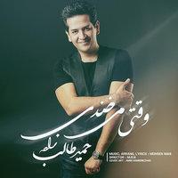 Hamid Talebzadeh - 'Vaghti Mikhandi'