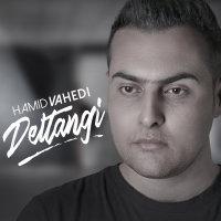 Hamid Vahedi - 'Deltangi'